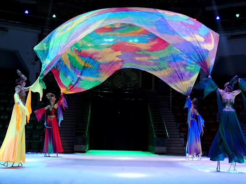 Ходули Московский цирк на льду